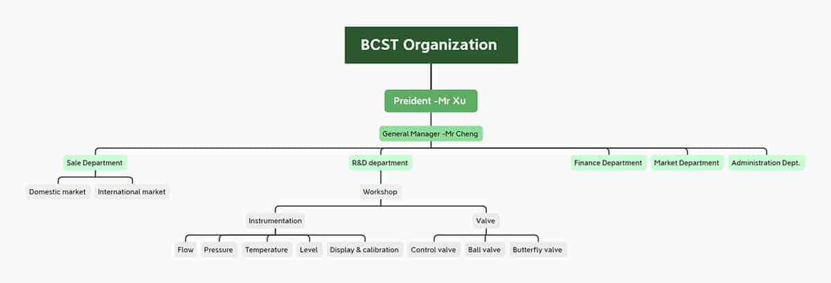 Bcst Organization